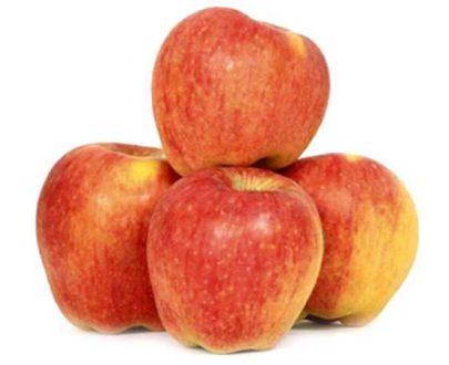 Delhi Apple