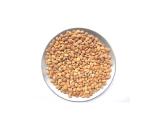 Feild Beans-Avaraikottai_mochaikottai