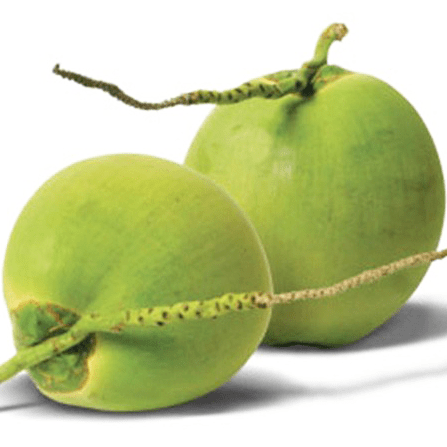Tender and Young coconut
