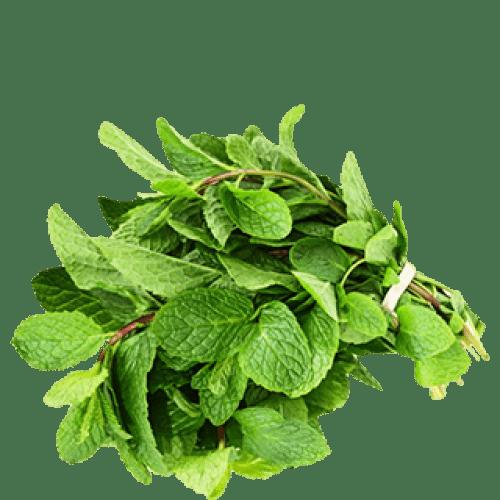 fresh-mint-pudina keerai