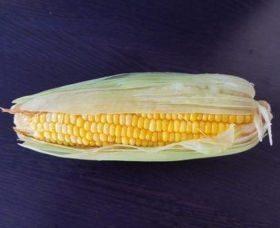 Corn Boild AptsoMart Online